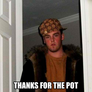 thanks for the pot